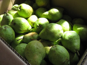 box of pears